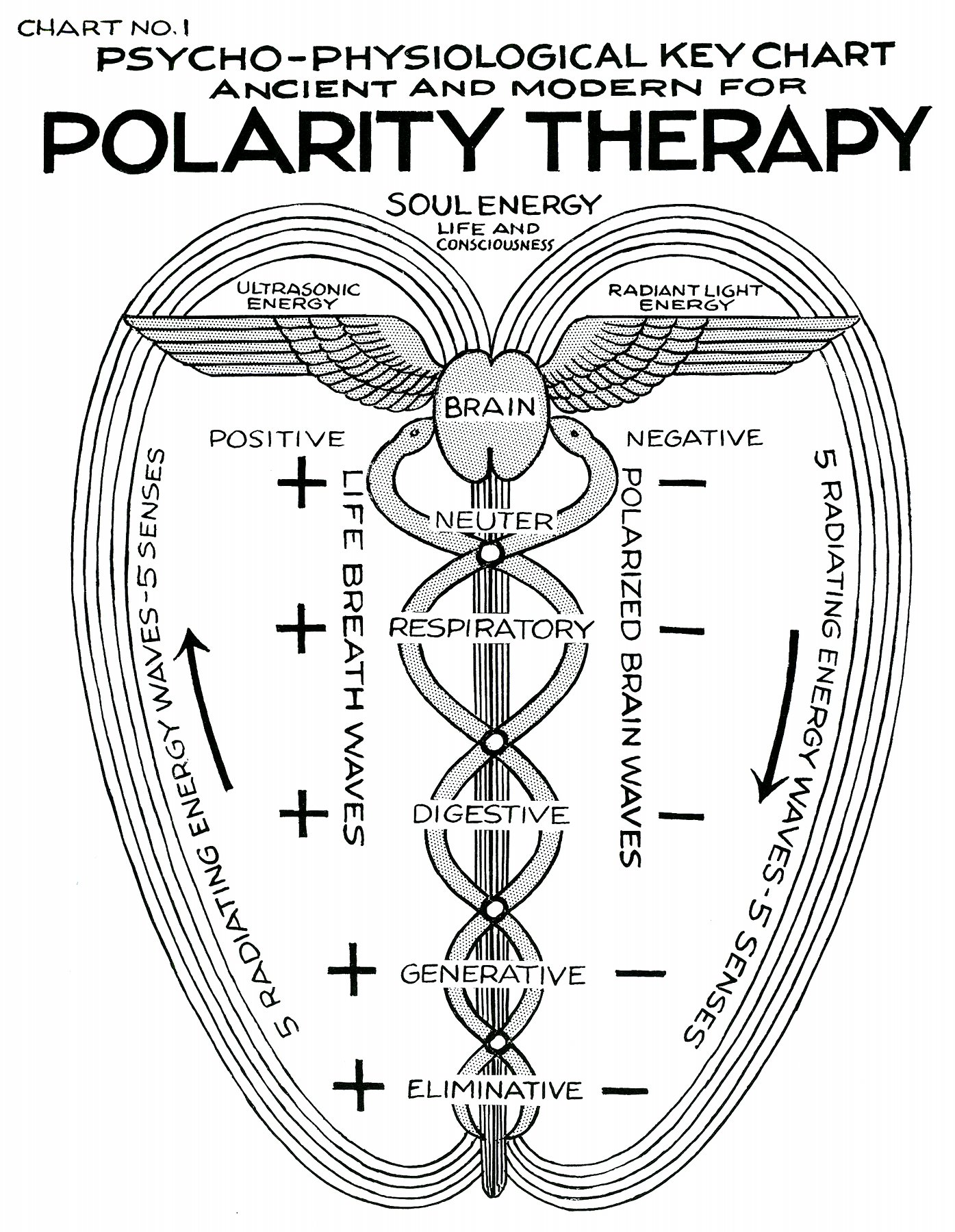 polarity therapy volume 1 book 3 chart 01 Illustration of Polarity